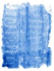 Indigo Spray Pattern Indicator Dye